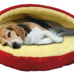 Top 10 Dog Beds
