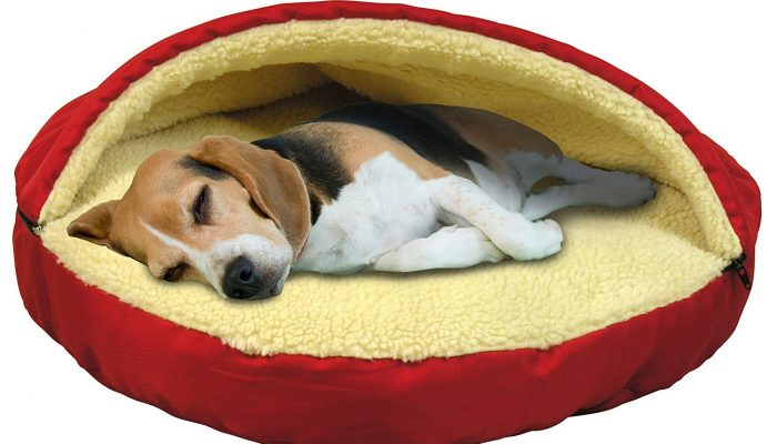 Top 10 Dog Beds